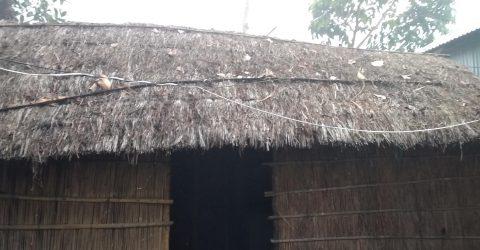 কালের বিবর্তনে হারিয়ে যাচ্ছে ঐতিহ্যবাহী খড়ের ঘর